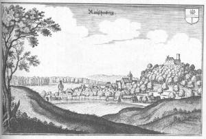 Rauschenberg_(Merian)