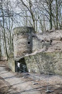 Zabelstein,_Burgruine-009